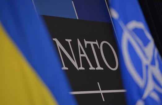 Україні слід зосередитися на реформі Міністерства оборони, а не на Плані дій щодо членства в НАТО