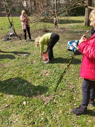 У Львові в Стрийському парку містяни викопують крокуси (ФОТО)