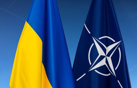 Генсек НАТО Столтенберг запевнив Зеленського у непохитній підтримці
